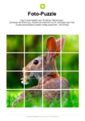 Fotopuzzle Hase
