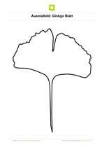 ginkgoblatt malvorlage | coloring and malvorlagan